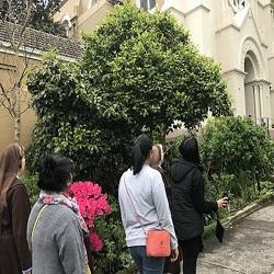 Provincial Delegate Carmelite Family Monthly News – October 2017