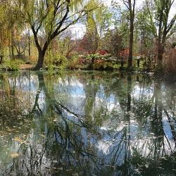 The Season of Creation - last session 3 October 2021 (Eco Spirituality Reading Circle)